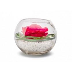 Rose Stabilisée Décorative Rouge Dans Sa Verrine - 13 Cm