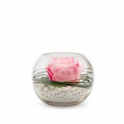 Rose Stabilisée Décorative Rose Dans Sa Verrine - 13 Cm