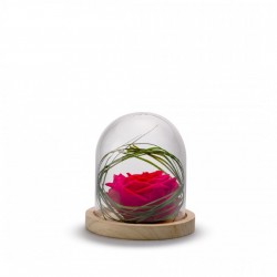 Cloche Rose Stabilisée Rouge Décorative Sur Socle Bois - 13 Cm