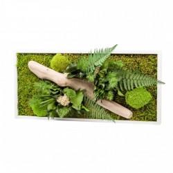 Tableau Végétal Nature Rectangulaire 57 X 27 Cm